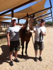 Miraval Equine Experience