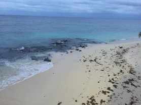 vomo-beach